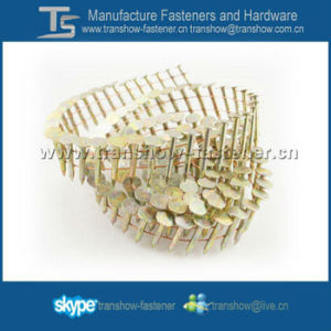 Galvanized 15 Degree Wire Coil Roofing Nails for Coil Nail pictures & photos