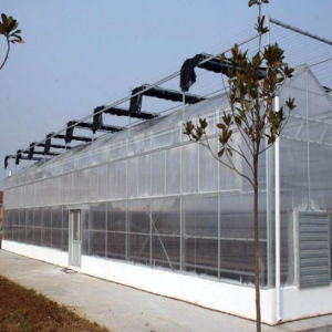 Gothic Multi-Span Poly PC Greenhouse for Sale pictures & photos