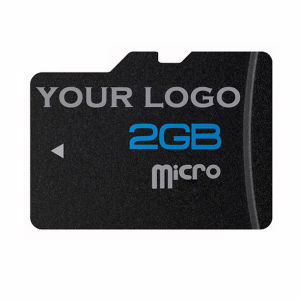 Free Sample Micro SD Memory Card 2GB