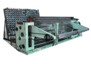 Low Carbon Steel Hexagonal Wire Mesh Netting Machine pictures & photos