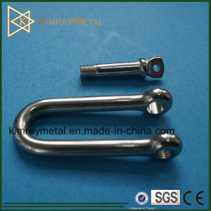 316 Stainless Steel Long Dee Shackle pictures & photos