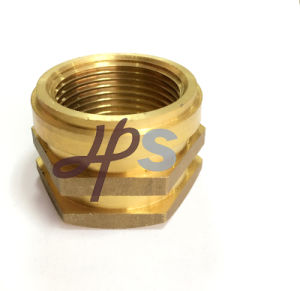 Brass Inserts - Brass Inserts for CPVC and PPR Pipe pictures & photos