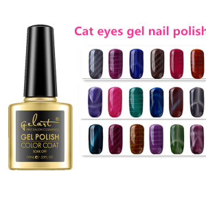 High Quality Factory Sell Cat Eyes Nail Polish Gel pictures & photos