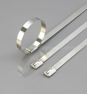 12X250mm Stainless Steel Cable Tie, Straps Ss304 316 pictures & photos
