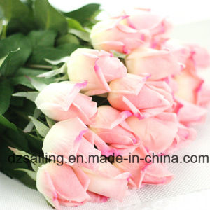 Popular Single Stem Rose Artificial Flower (SW15551)