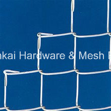 60mm X 60mm Chain Link Fencing Mesh pictures & photos