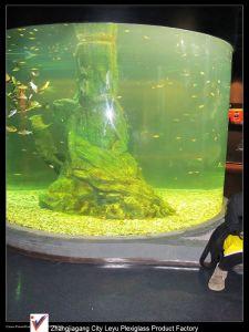 Super Round Acrylic Fish Aquarium Tanks pictures & photos