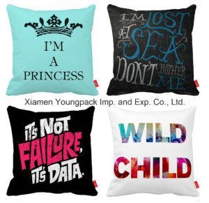 Promotional Home Decorative Custom Printing Chair Sofa Squarethrow Pillow Cushion pictures & photos
