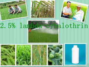 Hot Used Pesticide, Lambda-Cyhalothrin pictures & photos