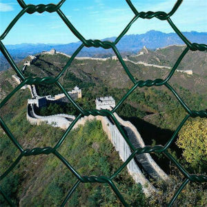 Hot Selling Low Price Breeding Hexagonal Wire Fence pictures & photos