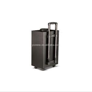 Low Price Active Trolley Karaoke Speaker with Wireless&Wired Mic/Bluetooth/TF /USB/SD/FM/Aux