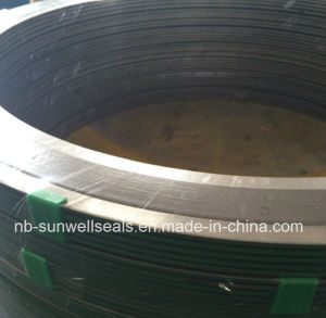 Spiral Wound Gaskets with Inner and Outer/Wound Gaskets/Graphite Gaskets/Metal Gaskets (SUNWELL) pictures & photos