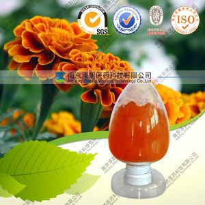 Marigold Flower Extract Powder Cws Lutein for Eyes pictures & photos
