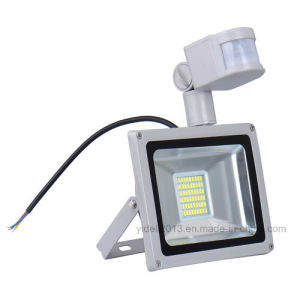 New Landscape Lamp Outdoor 30W SMD LED Floodlighting pictures & photos