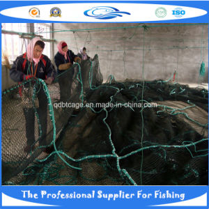 PE Knotless Fish Net (SDC17816) pictures & photos