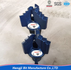 Drilling Drag Bit/ Chevron Drill Bit pictures & photos
