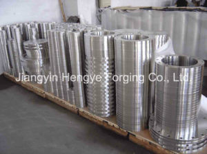 Hot Forged Stainless Steel Flanges of Material A182 F304 pictures & photos