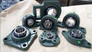 Pillow Block Bearings pictures & photos