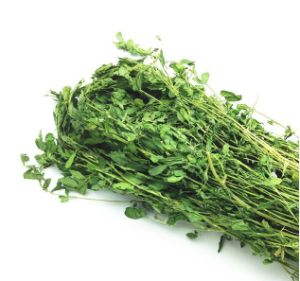Rabbit Grass Hay Alfalfa Grass Hay pictures & photos