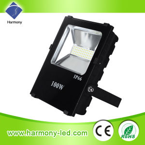 New 100W LED Flood Light with DMX 512 pictures & photos