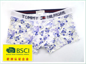 2015 Hot Product Underwear for Men Boxers 380 pictures & photos