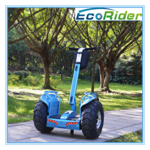 45 Climbing Angle Personal Individual off Road Vehicle Electric Scooter pictures & photos