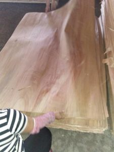The a B C D Grade Good Quality Okoume Veneer