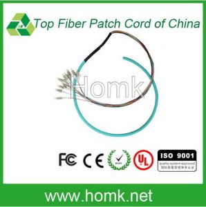 LC Ribbon Bundle Fiber Optic Patch Cord pictures & photos