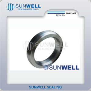 Rx Ring Joint Gasket Sunwell 820 pictures & photos