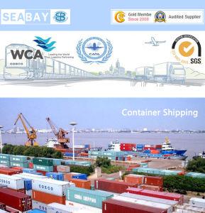 Sea Freight / Ocean Freight/Sea Cargo Shipping From Xiamen to Felixstowe UK pictures & photos