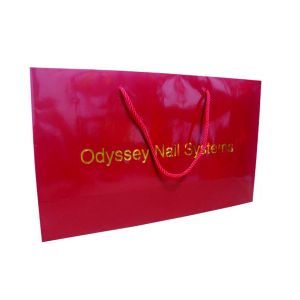 Customized Gift Paper Bags Printing pictures & photos