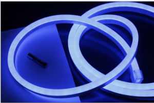 Blue SMD LED Neon Flex pictures & photos