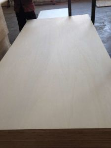 Lvb White Poplar Plywood for Furniture Use pictures & photos
