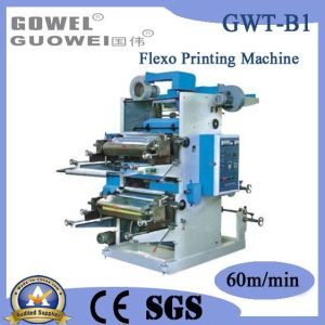 Mt Series Double-Color Label Flexo Printing Machine (GWT-B1) pictures & photos