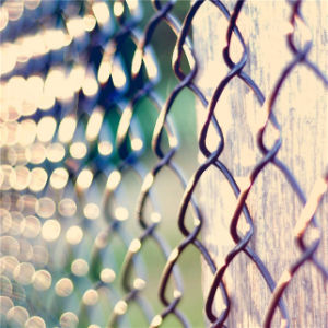 China Wholesale Virgin Chain Link Fence for Building Protection (SN) pictures & photos