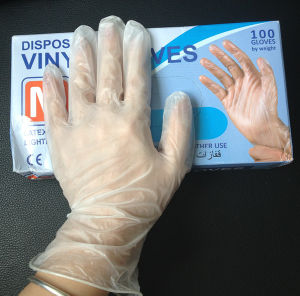 Disposable PVC Glove/ Vinyl Glove pictures & photos