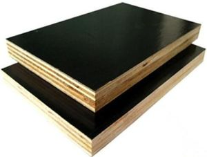 Film Faced Combi Birch-Hardwoods Plywood for Construction