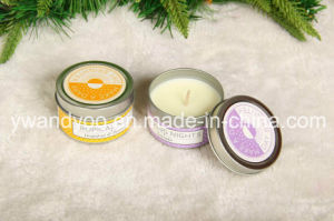 Grapefruit & Passion Fruit Scented Tin Candle