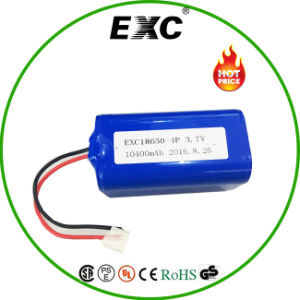 18650 Lithium Battery 10400 Battery Pack Power Supply pictures & photos
