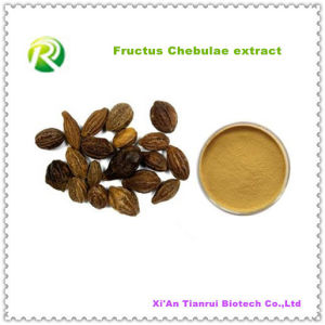 High Quality 100% Natural Fructus Chebulae Extract Powder pictures & photos