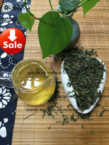 Cheap Price Green Tea pictures & photos