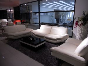 White European Style Genuine Leather Sofa (SBL-9149) pictures & photos