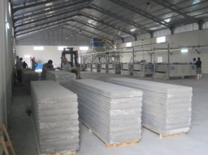 EPS Wall Panel Production Line pictures & photos