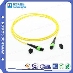 MPO Singlemode 12 Fibers Optical Connectors pictures & photos