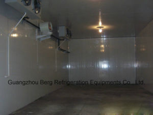 Customized Cold Room for Fish & Meat pictures & photos