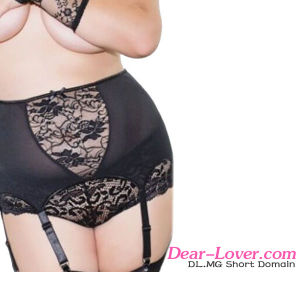 Plus Size High-Waisted Lace Hollow-out Garter Belt pictures & photos