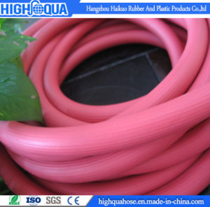 High Quality LPG Hose Assembly pictures & photos