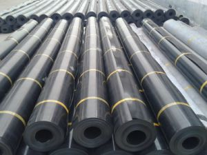 Double Smooth HDPE Geomembrane Liner pictures & photos