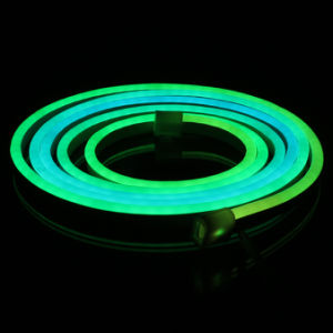 RGB Chasing LED Neon Flex Light for Display and Advertising pictures & photos
