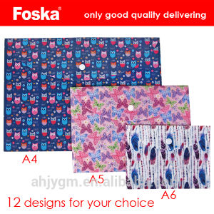 Good Quality PP A4/A5/A6 Buckle File Pocket pictures & photos